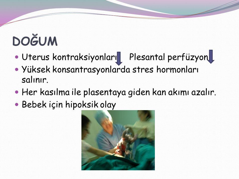 DOĞUM Uterus kontraksiyonları Plesantal perfüzyon Yüksek konsantrasyonlarda stres hormonları salınır.