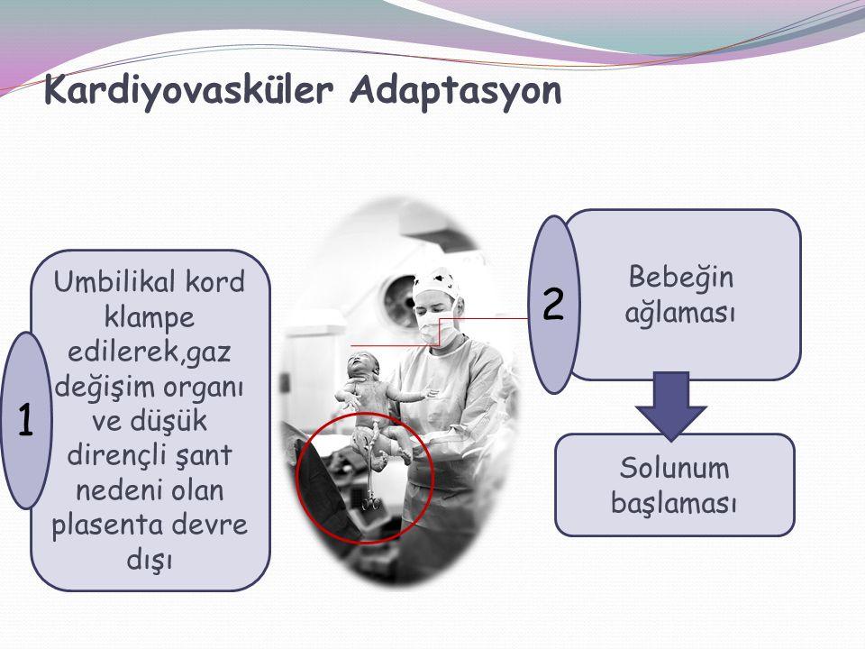 Kardiyovasküler Adaptasyon Umbilikal kord klampe edilerek,gaz değişim organı ve düşük dirençli şant nedeni olan plasenta devre dışı Bebeğin ağlaması 1 2 Solunum başlaması