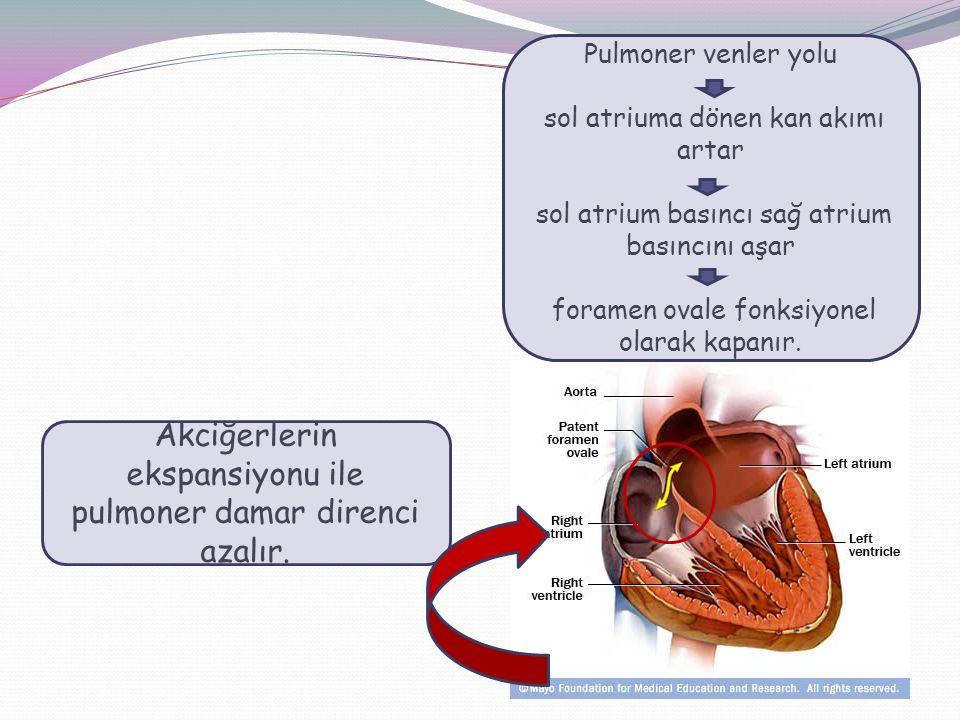 Akciğerlerin ekspansiyonu ile pulmoner damar direnci azalır. Pulmoner venler yolu sol atriuma dönen kan akımı artar sol atrium basıncı sağ atrium bası