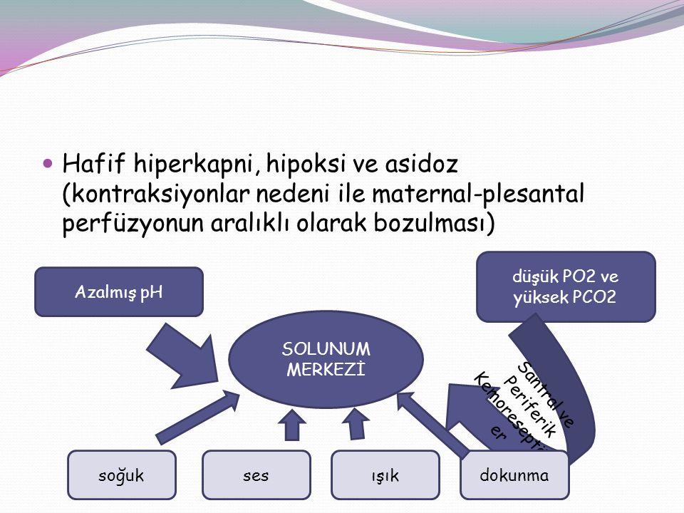 Hafif hiperkapni, hipoksi ve asidoz (kontraksiyonlar nedeni ile maternal-plesantal perfüzyonun aralıklı olarak bozulması) SOLUNUM MERKEZİ Azalmış pH d