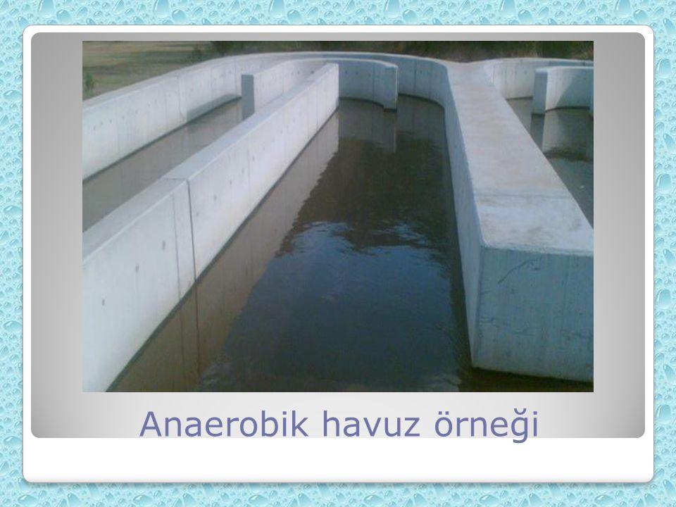 Anaerobik havuz örneği