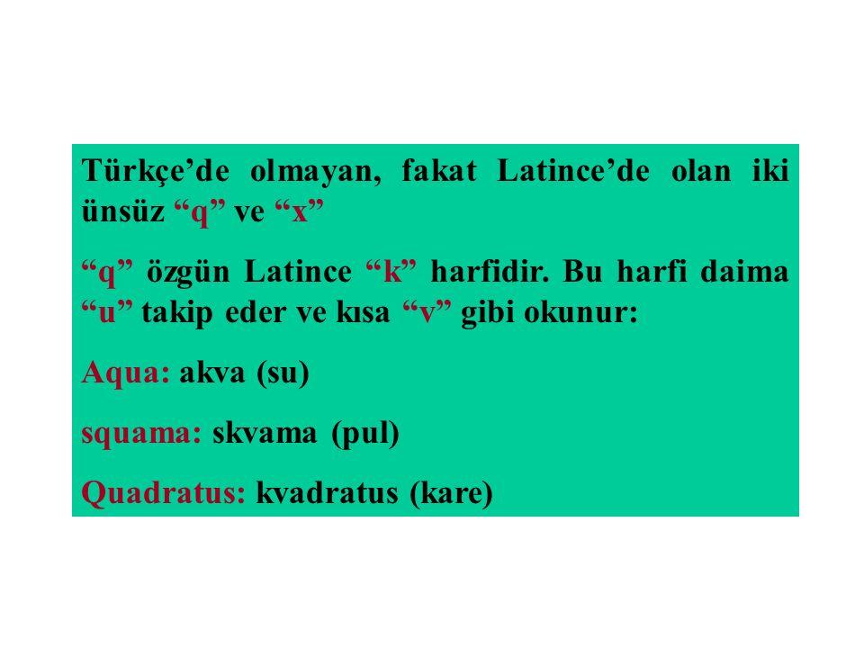 """Türkçe'de olmayan, fakat Latince'de olan iki ünsüz """"q"""" ve """"x"""" """"q"""" özgün Latince """"k"""" harfidir. Bu harfi daima """"u"""" takip eder ve kısa """"v"""" gibi okunur: A"""