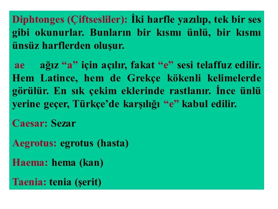 """Diphtonges (Çiftsesliler): İki harfle yazılıp, tek bir ses gibi okunurlar. Bunların bir kısmı ünlü, bir kısmı ünsüz harflerden oluşur. ae ağız """"a"""" içi"""