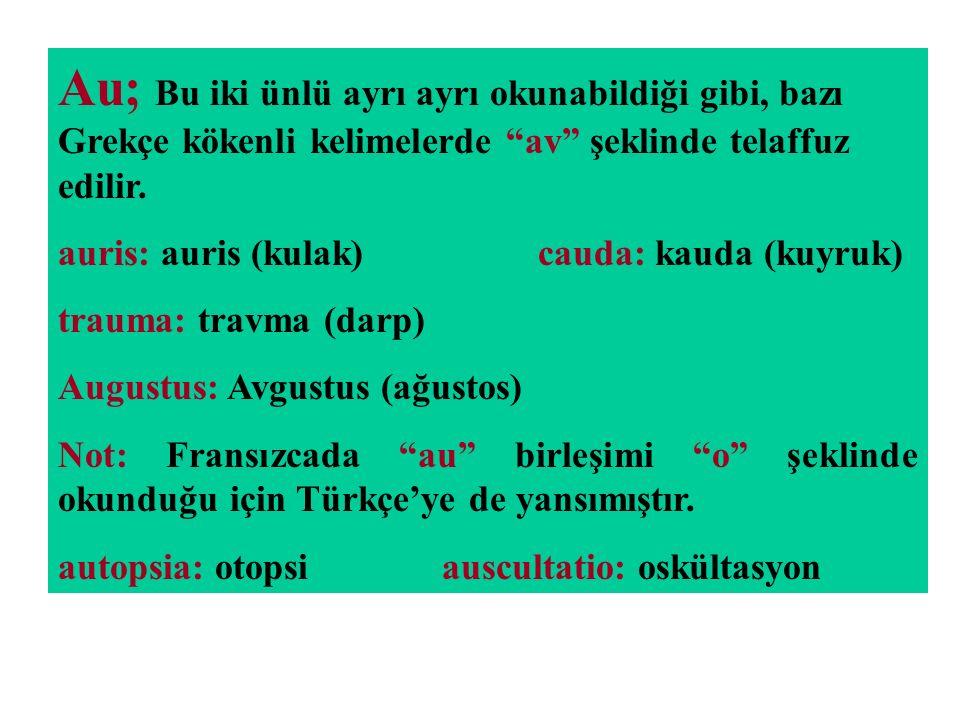 """Au; Bu iki ünlü ayrı ayrı okunabildiği gibi, bazı Grekçe kökenli kelimelerde """"av"""" şeklinde telaffuz edilir. auris: auris (kulak)cauda: kauda (kuyruk)"""