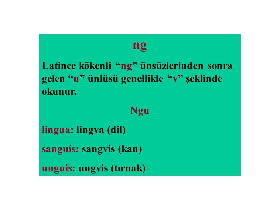 "ng Latince kökenli ""ng"" ünsüzlerinden sonra gelen ""u"" ünlüsü genellikle ""v"" şeklinde okunur. Ngu lingua: lingva (dil) sanguis: sangvis (kan) unguis: u"
