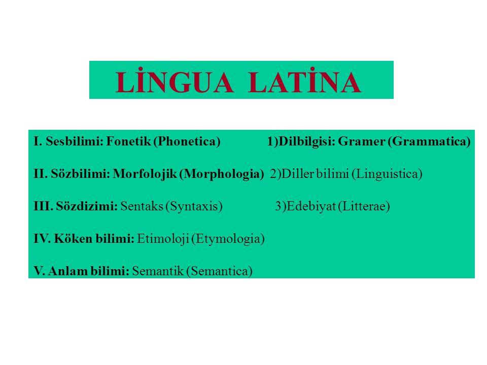 LİNGUA LATİNA I. Sesbilimi: Fonetik (Phonetica) 1)Dilbilgisi: Gramer (Grammatica) II. Sözbilimi: Morfolojik (Morphologia) 2)Diller bilimi (Linguistica