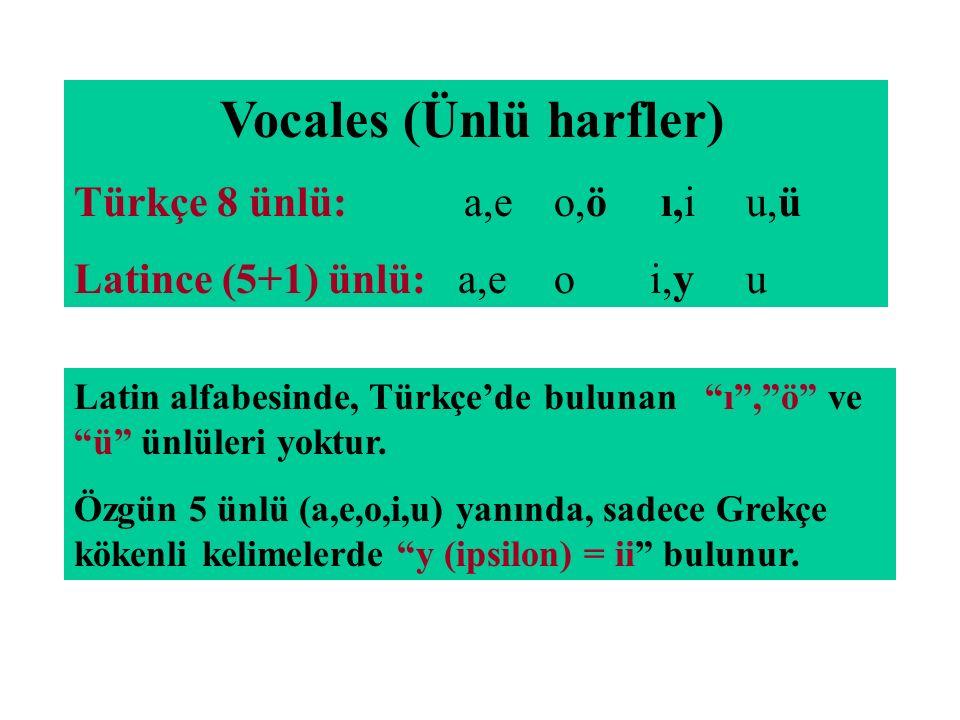 """Vocales (Ünlü harfler) Türkçe 8 ünlü: a,eo,ö ı,iu,ü Latince (5+1) ünlü:a,eoi,yu Latin alfabesinde, Türkçe'de bulunan """"ı"""",""""ö"""" ve """"ü"""" ünlüleri yoktur. Ö"""