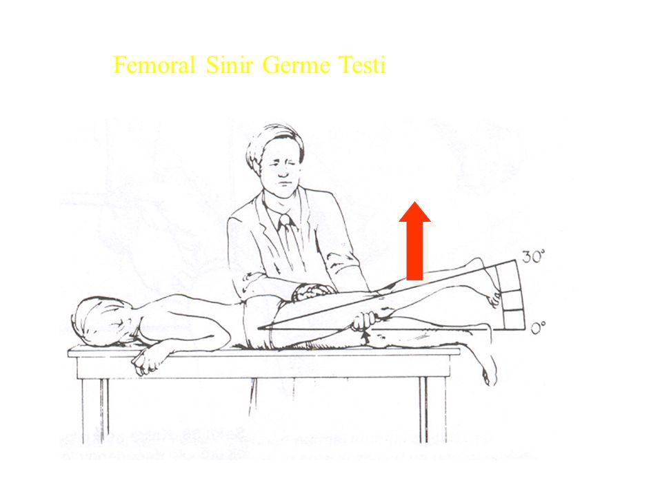 Femoral Sinir Germe Testi