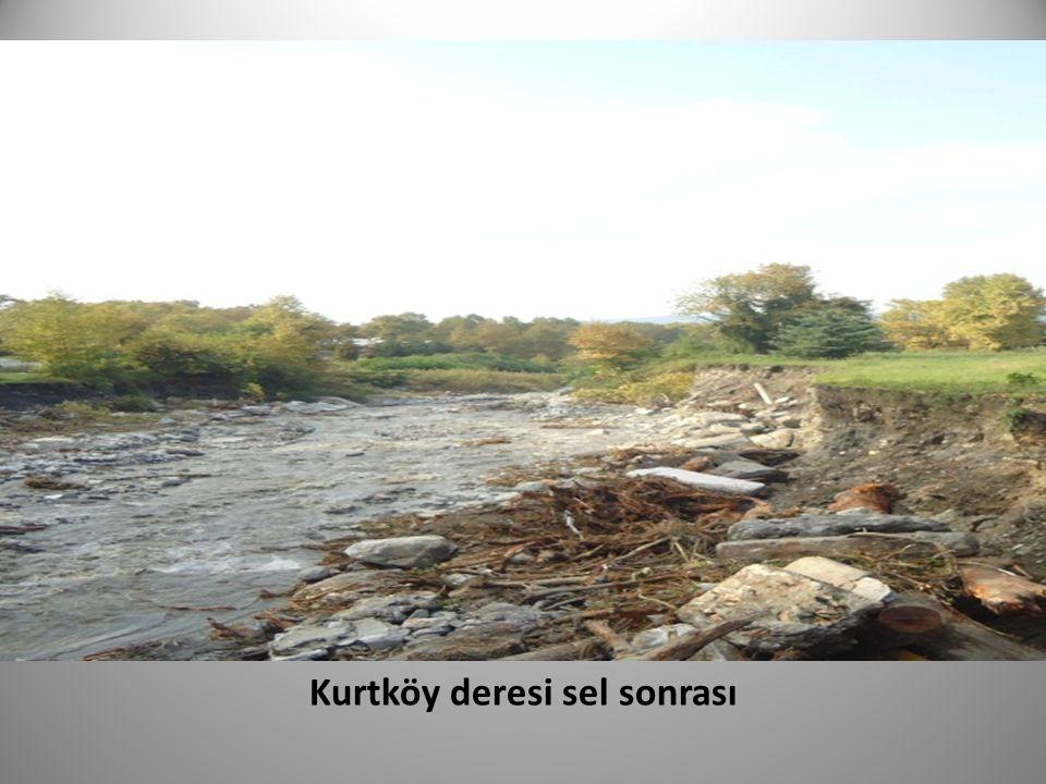 Kurtköy deresi sel sonrası