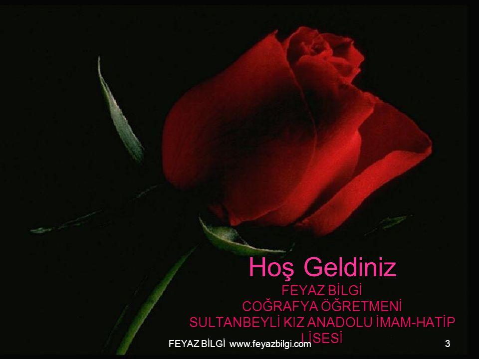 FEYAZ BİLGİ www.feyazbilgi.com13