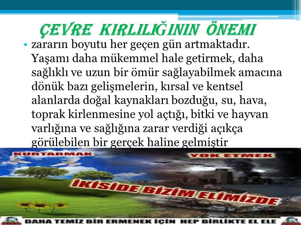SES K İ RL İ L İĞİ NE YOL AÇAN ETMENLER NELERD İ R.
