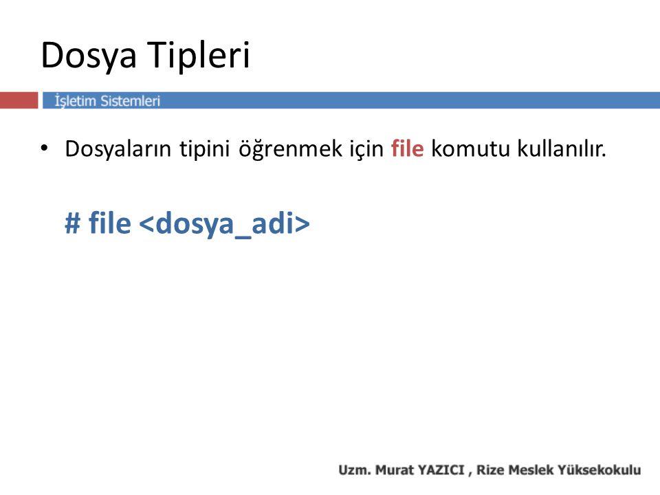 Dosya Tipleri Dosyaların tipini öğrenmek için file komutu kullanılır. # file
