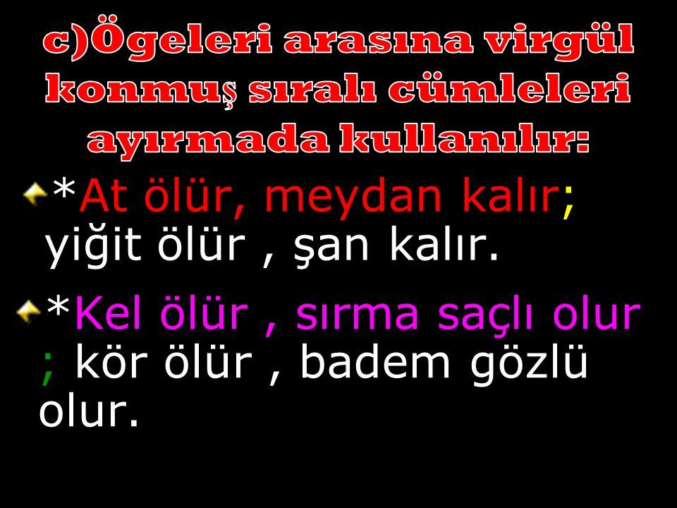 *Sayısal derslerden matemati ğ i, fizi ğ i; sözel derslerden Türkçeyi, co ğ rafyayı çok seviyorum.