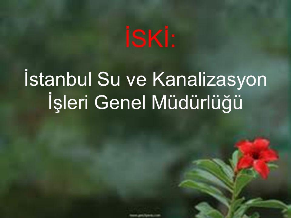 İSKİ: İstanbul Su ve Kanalizasyon İşleri Genel Müdürlüğü