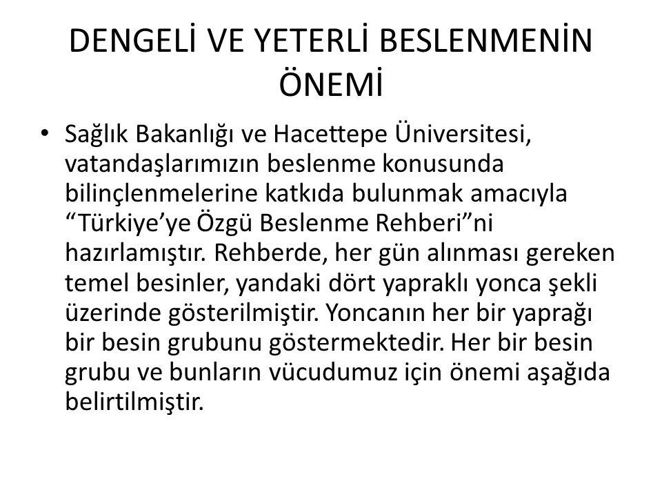 DENGELİ VE YETERLİ BESLENMENİN ÖNEMİ Sağlık Bakanlığı ve Hacettepe Üniversitesi, vatandaşlarımızın beslenme konusunda bilinçlenmelerine katkıda bulunm