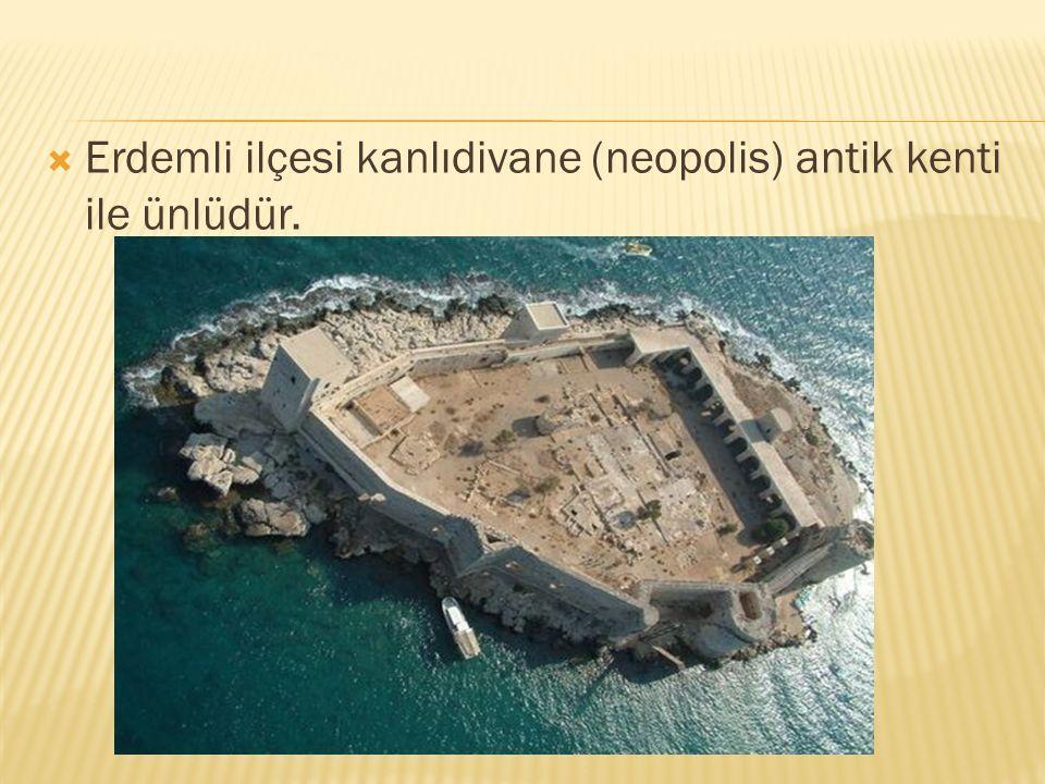  Erdemli ilçesi kanlıdivane (neopolis) antik kenti ile ünlüdür.
