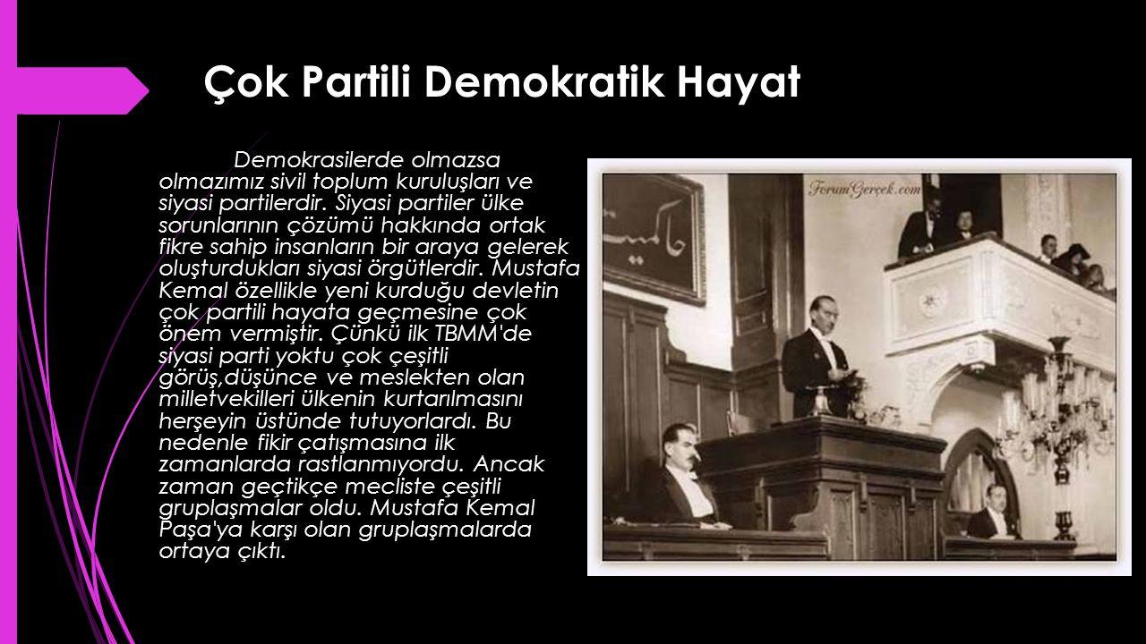 Çok Partili Demokratik Hayat Demokrasilerde olmazsa olmazımız sivil toplum kuruluşları ve siyasi partilerdir. Siyasi partiler ülke sorunlarının çözümü