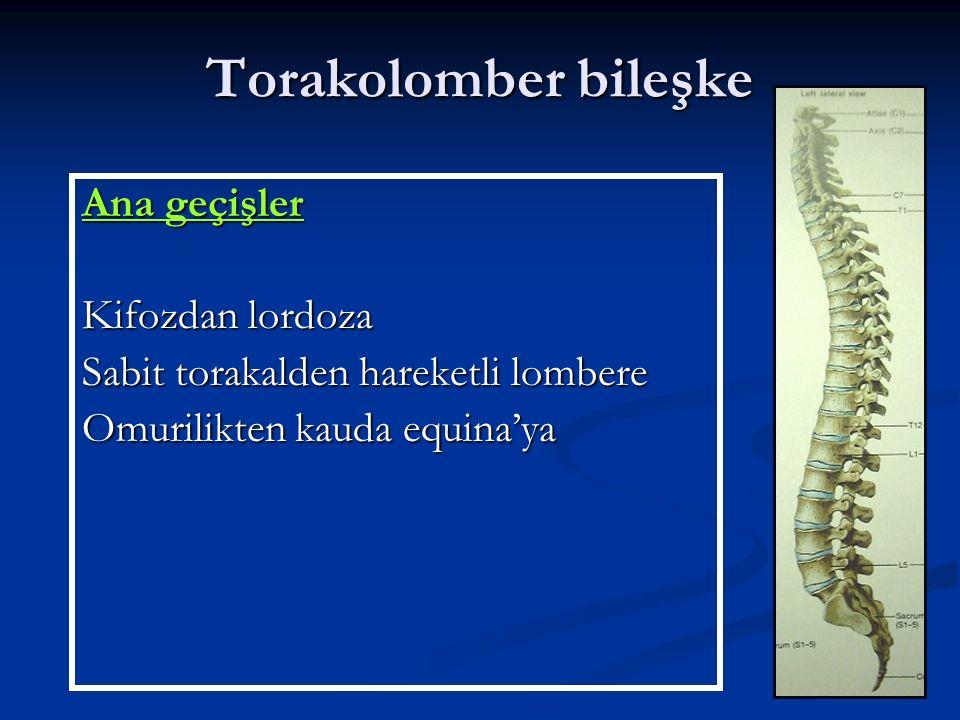 Torakolomber yaralanmalarda konservatif tedavi Ortez kullanımı: Kompresyon kırıkları Kompresyon kırıkları Stabil Burst kırıkları Stabil Burst kırıkları Pür kemik Fleksiyon-Distraksiyon yaralanması Pür kemik Fleksiyon-Distraksiyon yaralanması