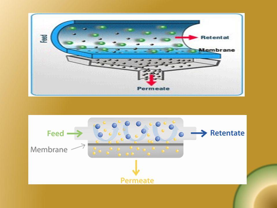 Dolaşımlı evaporatörler Süt sürekli vakum altında kaynatılarak kısmen suyundan arındırılır.