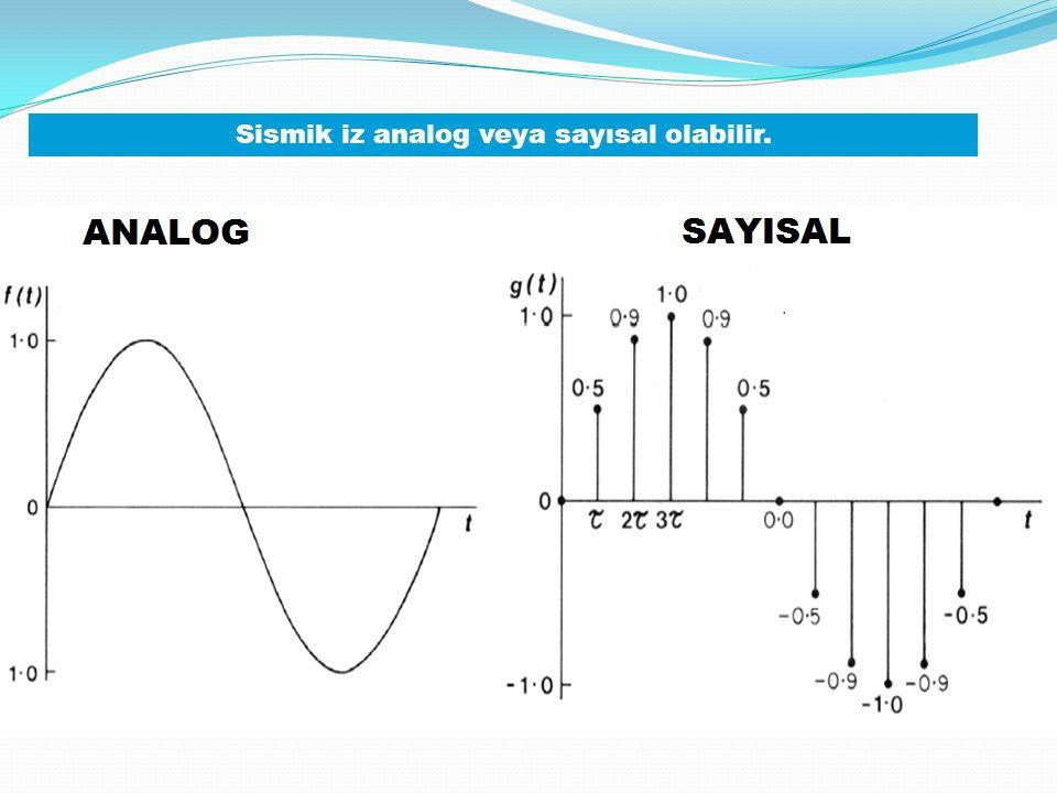 Sismik iz analog veya sayısal olabilir.