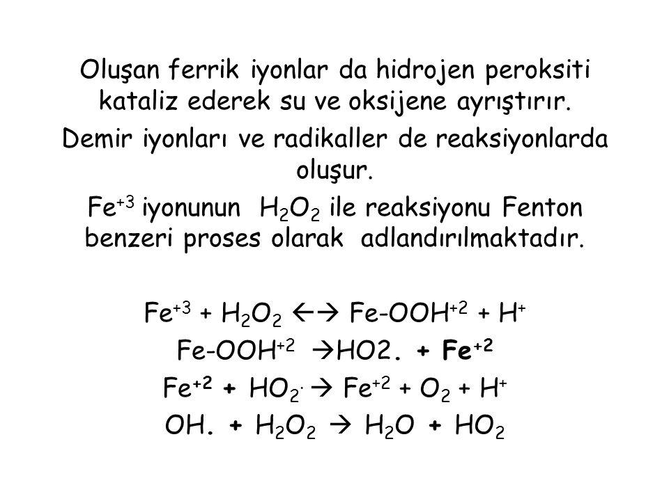Oluşan ferrik iyonlar da hidrojen peroksiti kataliz ederek su ve oksijene ayrıştırır. Demir iyonları ve radikaller de reaksiyonlarda oluşur. Fe +3 iyo