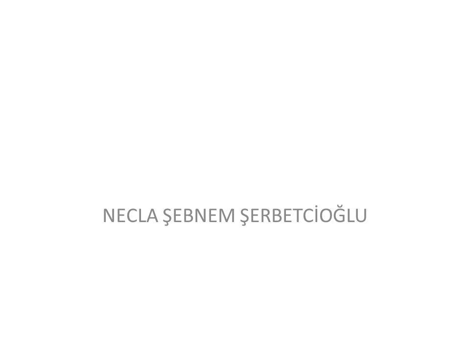 NECLA ŞEBNEM ŞERBETCİOĞLU