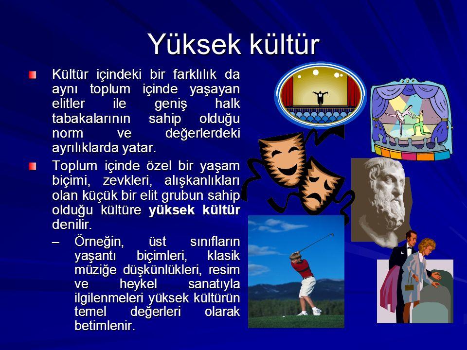 Yüksek kültür Kültür içindeki bir farklılık da aynı toplum içinde yaşayan elitler ile geniş halk tabakalarının sahip olduğu norm ve değerlerdeki ayrılıklarda yatar.
