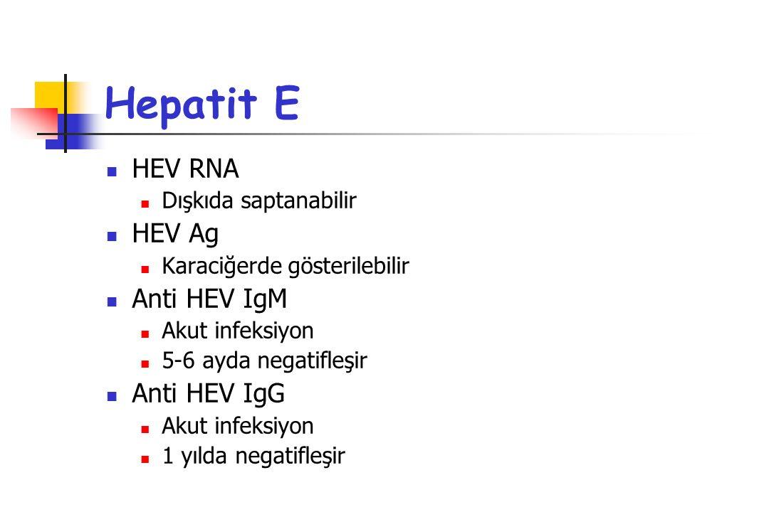 Hepatit E HEV RNA Dışkıda saptanabilir HEV Ag Karaciğerde gösterilebilir Anti HEV IgM Akut infeksiyon 5-6 ayda negatifleşir Anti HEV IgG Akut infeksiy