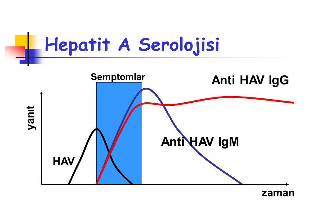 Hepatit E HEV RNA Dışkıda saptanabilir HEV Ag Karaciğerde gösterilebilir Anti HEV IgM Akut infeksiyon 5-6 ayda negatifleşir Anti HEV IgG Akut infeksiyon 1 yılda negatifleşir