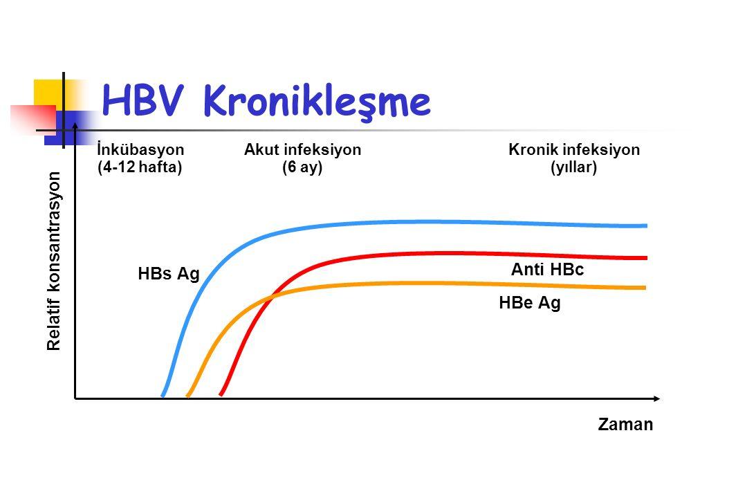 HBs Ag HBe Ag Anti HBc İnkübasyon (4-12 hafta) Akut infeksiyon (6 ay) Kronik infeksiyon (yıllar) Relatif konsantrasyon Zaman HBV Kronikleşme