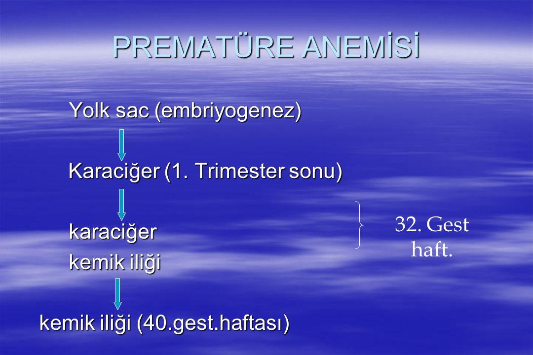 PREMATÜRE ANEMİSİ Yolk sac (embriyogenez) Karaciğer (1. Trimester sonu) Karaciğer (1. Trimester sonu)karaciğer kemik iliği kemik iliği (40.gest.haftas