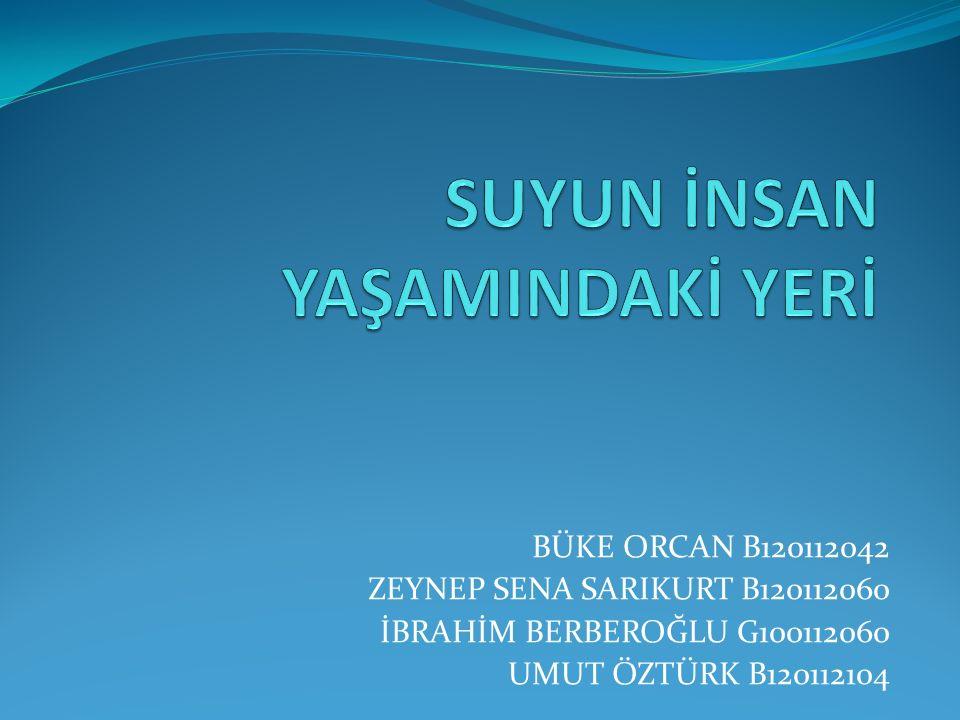 BÜKE ORCAN B120112042 ZEYNEP SENA SARIKURT B120112060 İBRAHİM BERBEROĞLU G100112060 UMUT ÖZTÜRK B120112104