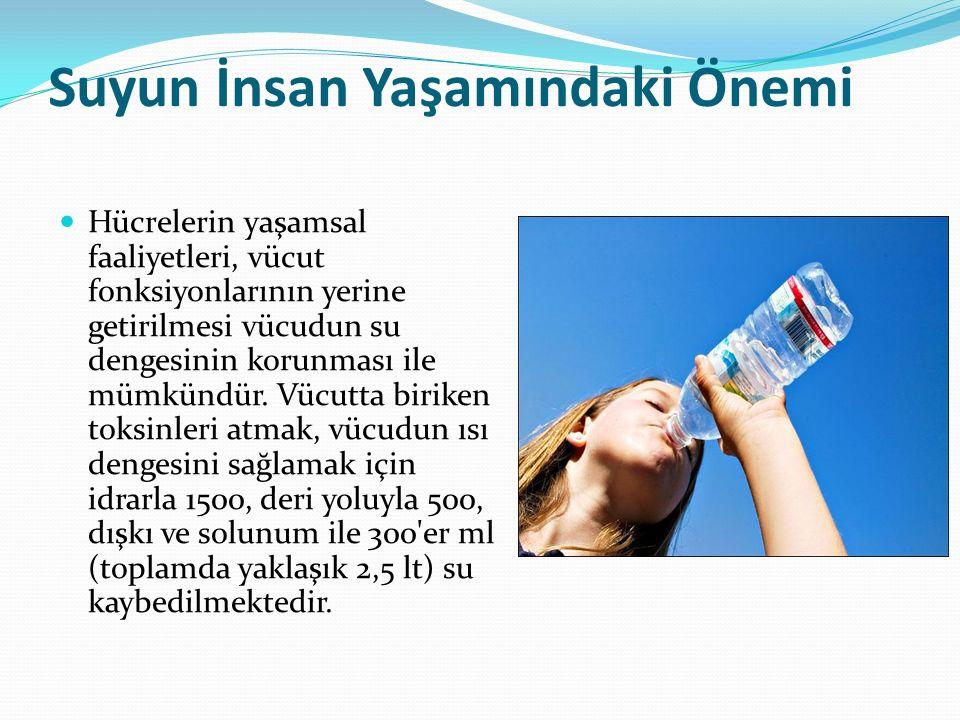 Suyun İnsan Yaşamındaki Önemi Hücrelerin yaşamsal faaliyetleri, vücut fonksiyonlarının yerine getirilmesi vücudun su dengesinin korunması ile mümkündü
