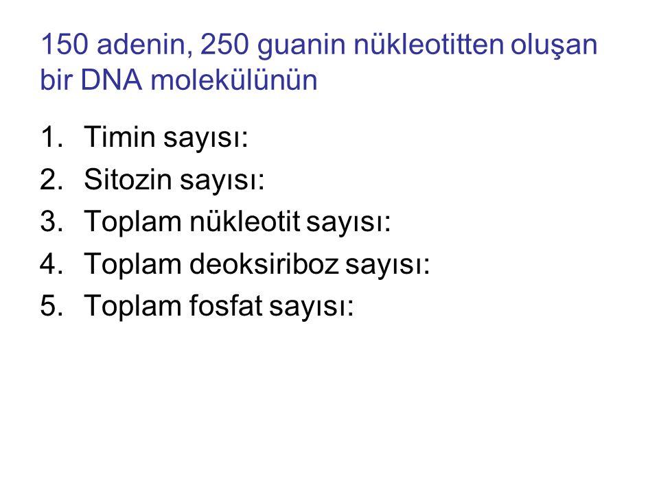 150 adenin, 250 guanin nükleotitten oluşan bir DNA molekülünün 1.Timin sayısı: 2.Sitozin sayısı: 3.Toplam nükleotit sayısı: 4.Toplam deoksiriboz sayısı: 5.Toplam fosfat sayısı:
