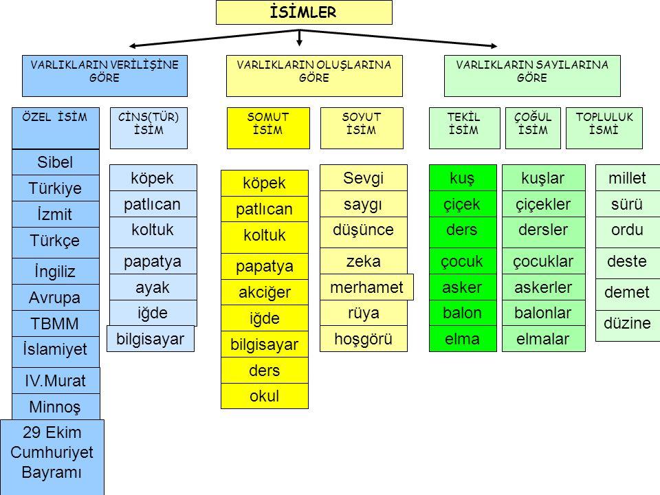 VARLIKLARIN VERİLİŞİNE GÖRE VARLIKLARIN OLUŞLARINA GÖRE VARLIKLARIN SAYILARINA GÖRE ÖZEL İSİMCİNS(TÜR) İSİM SOMUT İSİM SOYUT İSİM TEKİL İSİM TOPLULUK İSMİ ÇOĞUL İSİM Türkiye İzmit Türkçe İngiliz Avrupa Sibel TBMM İslamiyet IV.Murat Minnoş 29 Ekim Cumhuriyet Bayramı İSİMLER köpek patlıcan koltuk papatya ayak iğde bilgisayar köpek patlıcan koltuk papatya akciğer iğde bilgisayar ders okul Sevgi saygı düşünce zeka merhamet rüya hoşgörü kuş çiçek ders çocuk asker balon elma kuşlar çiçekler dersler çocuklar askerler balonlar elmalar millet sürü ordu deste demet düzine