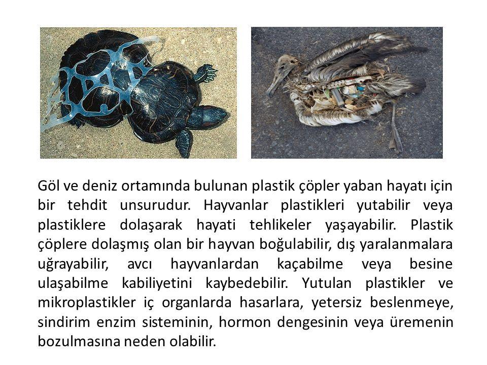 Göl ve deniz ortamında bulunan plastik çöpler yaban hayatı için bir tehdit unsurudur. Hayvanlar plastikleri yutabilir veya plastiklere dolaşarak hayat