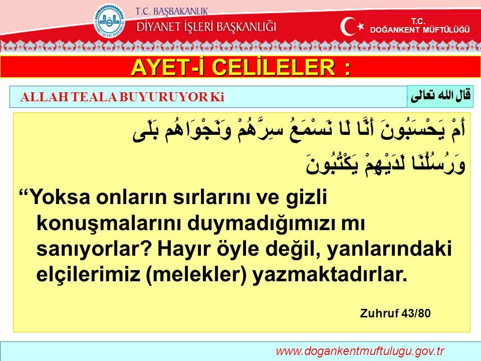 Safvan İbnu Süleym (r.a.) anlatıyor: Ey Allah ın Resulü!, mü min korkak olur mu? Evet! buyurdular.