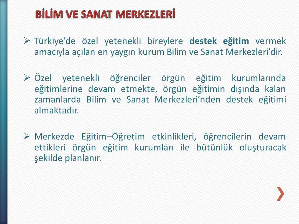  Türkiye'de özel yetenekli bireylere destek eğitim vermek amacıyla açılan en yaygın kurum Bilim ve Sanat Merkezleri'dir.  Özel yetenekli öğrenciler
