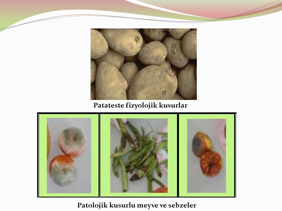 Patateste fizyolojik kusurlar Patolojik kusurlu meyve ve sebzeler