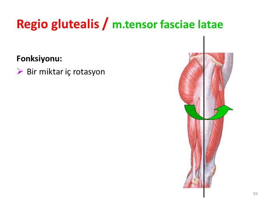 94 Regio glutealis / m.tensor fasciae latae Fonksiyonu:  Bir miktar iç rotasyon