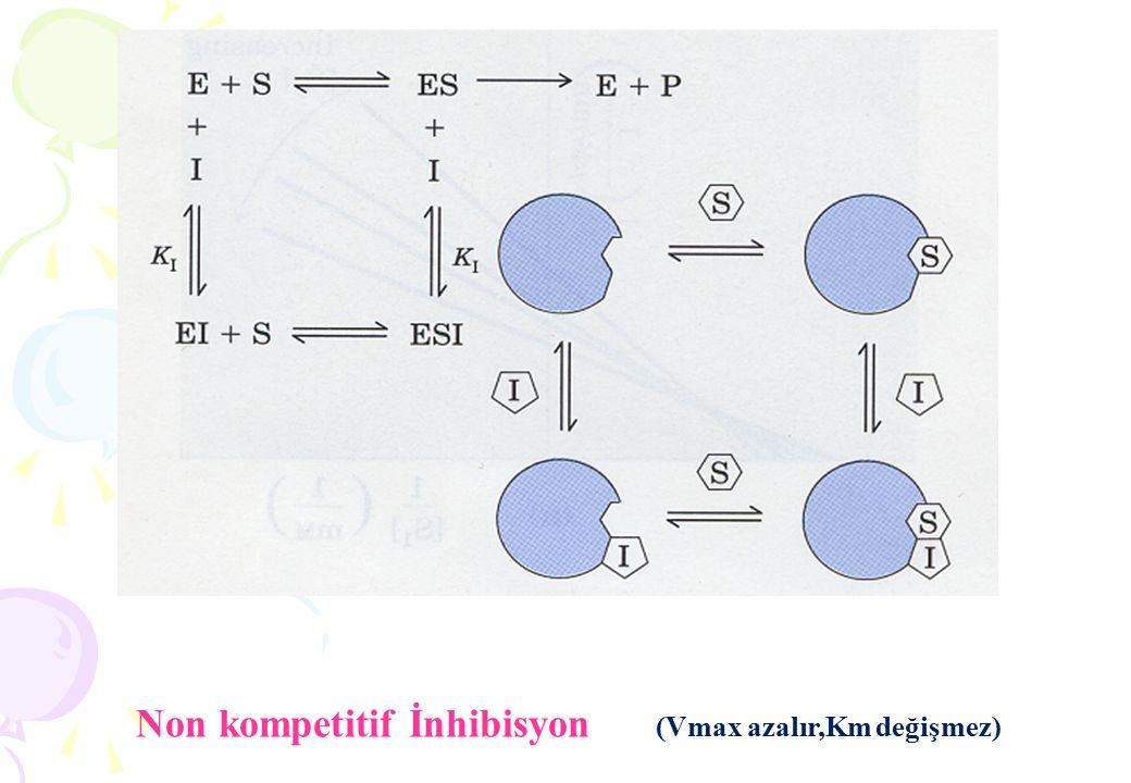 Non kompetitif İnhibisyon (Vmax azalır,Km değişmez)