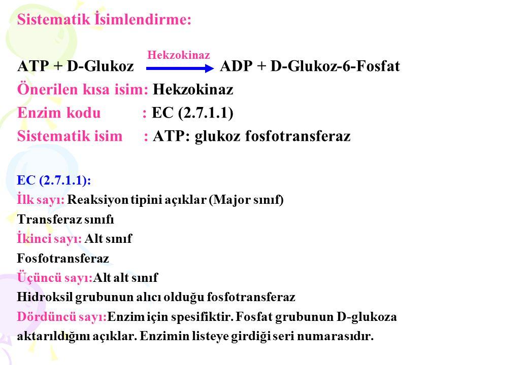 IV.ENZİMLERİN ÖZELLİKLERİ 1.