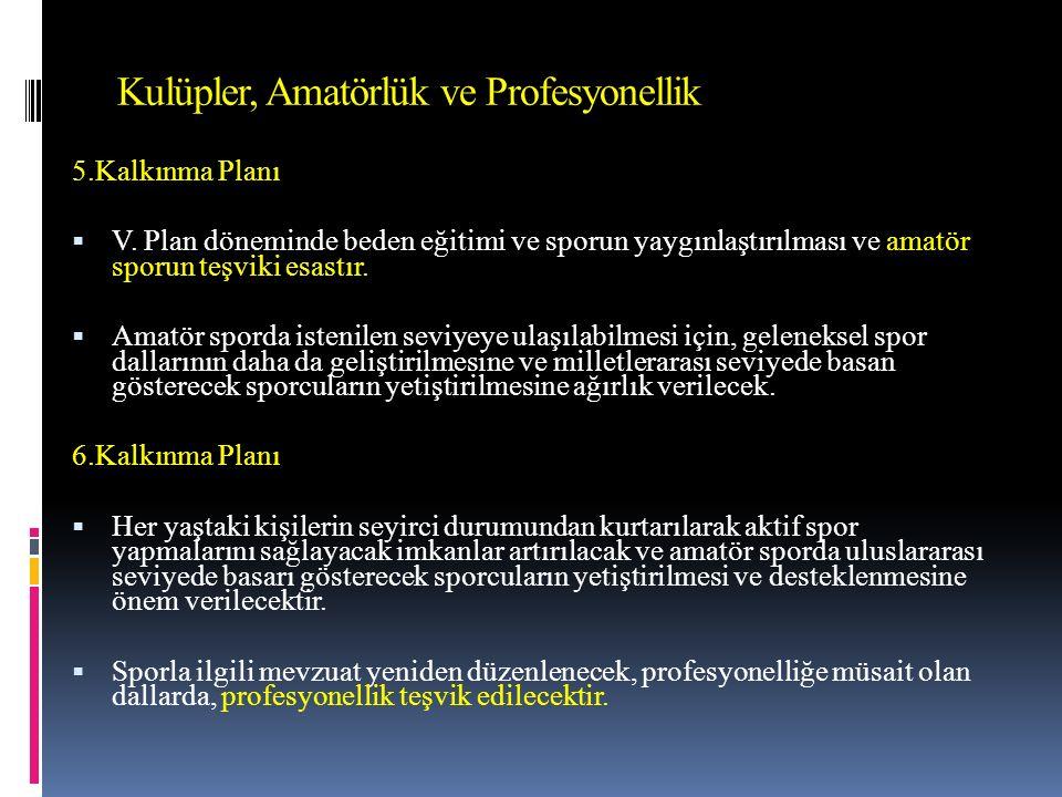 Kulüpler, Amatörlük ve Profesyonellik 5.Kalkınma Planı  V.