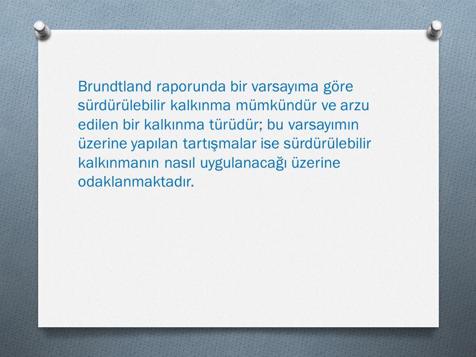 Brundtland raporunda bir varsayıma göre sürdürülebilir kalkınma mümkündür ve arzu edilen bir kalkınma türüdür; bu varsayımın üzerine yapılan tartışmalar ise sürdürülebilir kalkınmanın nasıl uygulanacağı üzerine odaklanmaktadır.