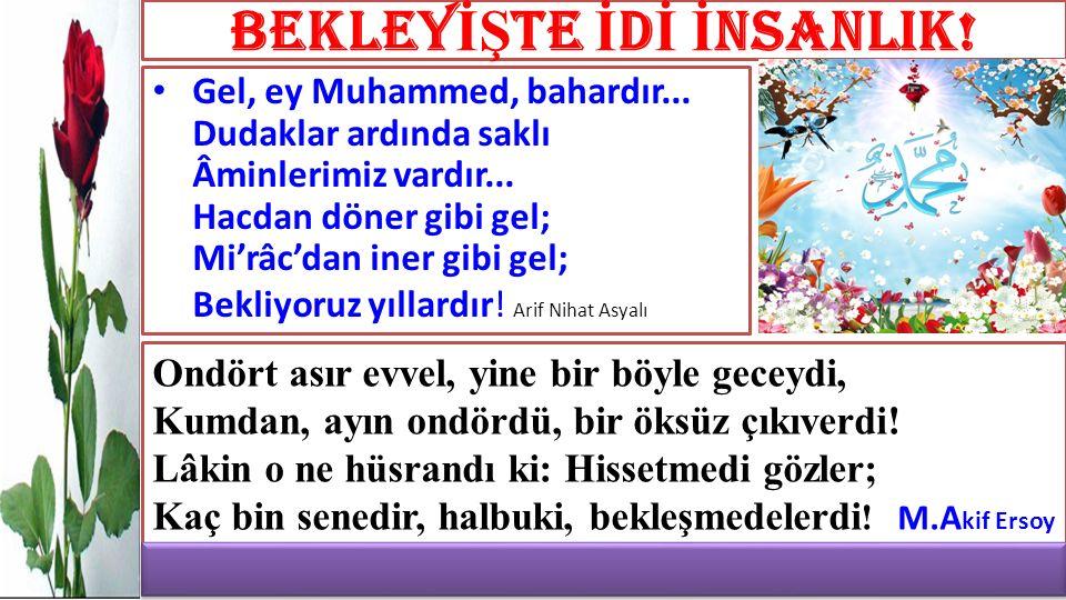 Hassan B.