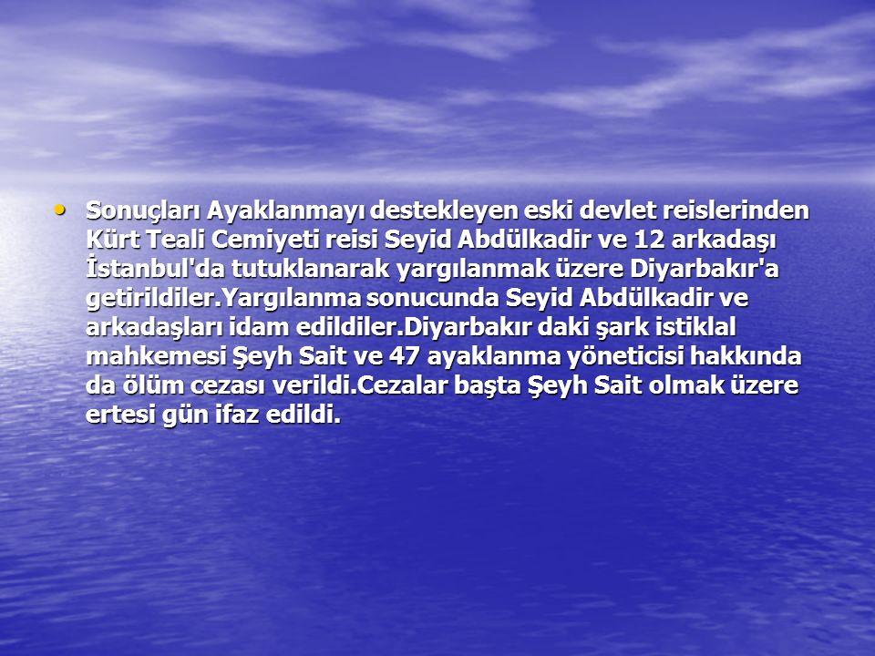 Sonuçları Ayaklanmayı destekleyen eski devlet reislerinden Kürt Teali Cemiyeti reisi Seyid Abdülkadir ve 12 arkadaşı İstanbul'da tutuklanarak yargılan
