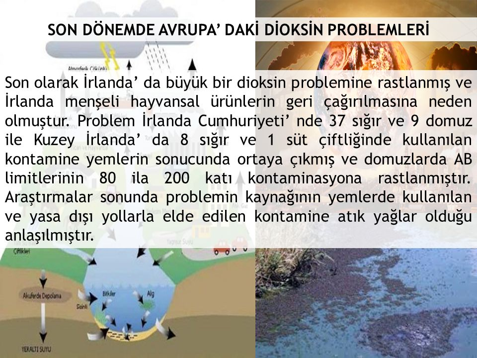 SON DÖNEMDE AVRUPA' DAKİ DİOKSİN PROBLEMLERİ Son olarak İrlanda' da büyük bir dioksin problemine rastlanmış ve İrlanda menşeli hayvansal ürünlerin geri çağırılmasına neden olmuştur.