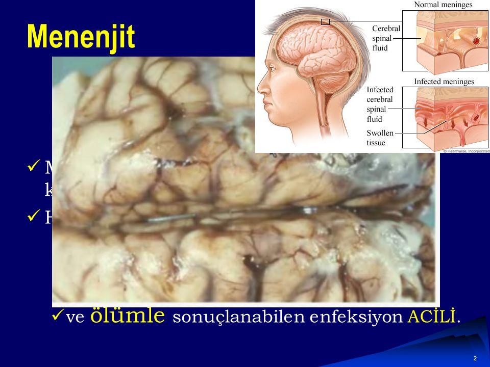 2 Menenjit Menenjit, beyni saran zarların iltihabıyla karakterize, Hemen tedavi edilmezse işitme kaybı, Kalıcı beyin hasarı ve ölümle sonuçlanabilen enfeksiyon ACİLİ.