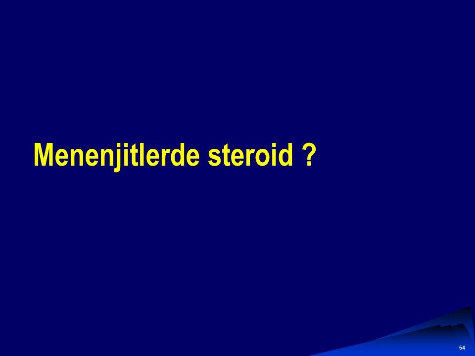 53 MikroorganizmaÖnerilen tedaviAlternatif tedavi S.pneumoniae Vankomisin +3.K sefalosporin Meropenem, Florokinolon N.meningitidis 3.K sefalosporinPen