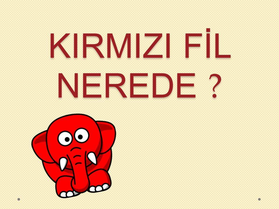 Ali kırmızı fili aşağıdaki karakterlerden hangisine sormamıştır?